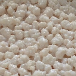 Kefir grains header
